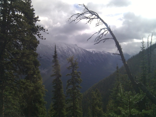 Hike Sulphur Mountain