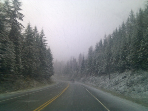 Snowstorm on HWY 1, British Columbia, Canada