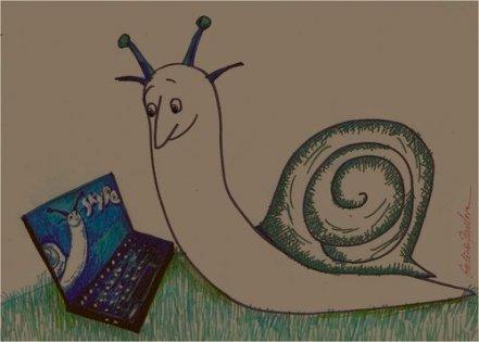snail skype