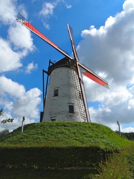 Belgian Windmill, 2012
